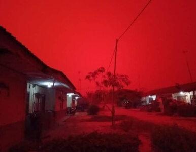 Czerwonokrwiste niebo nad miastem, mieszkańcy w panice. Co się dzieje?