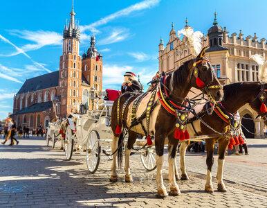 Odkryj najpiękniejsze miasta Polski!