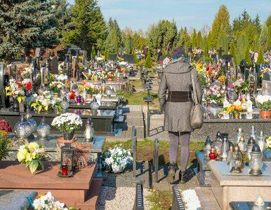Wszystkich Świętych. Prof. Grzesiowski: 1 listopada cmentarze powinny...
