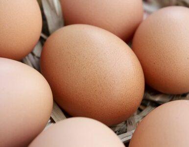 Drożyzna w sklepach. Cena jajek skoczyła w tydzień o 70 proc.