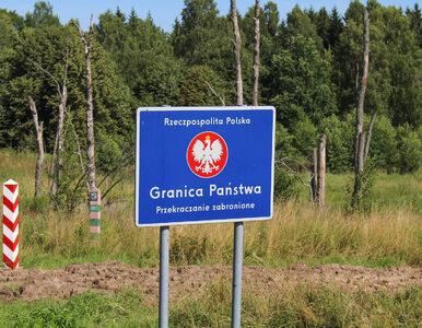 Polska wprowadza kontrole sanitarne na granicach. GIS wydał komunikat