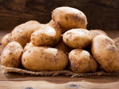 Jesz takie ziemniaki? Możesz się poważnie zatruć
