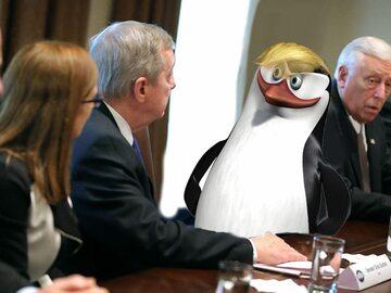 Pingwin zamiast Trumpa. Najlepsze przeróbki zdjęć