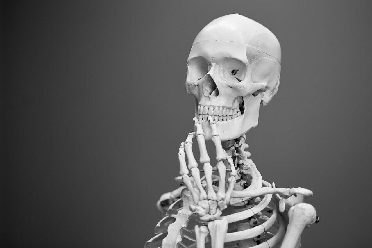 Ile średnio ważny cały szkielet kobiety?