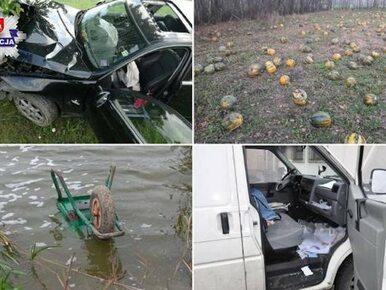 """Lubelska policja podsumowała rok i zebrała """"najciekawsze"""" interwencje...."""
