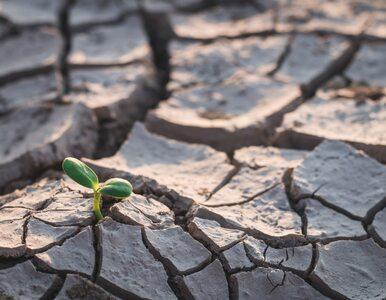 Gróbarczyk: Polska zatrzymuje tylko 6,5 proc. wody. Trzeba ten...