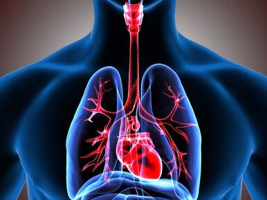 Jak wzmocnić serce? Najlepsze i najprostsze sposoby