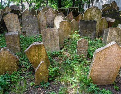 Ostrowiec Świętokrzyski. Zniszczono grobowiec rabina