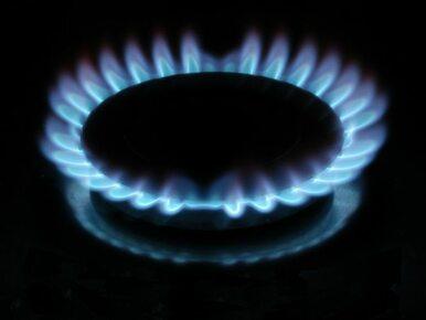 A jeżeli Rosja odetnie gaz? Scenariusze dla całej Europy
