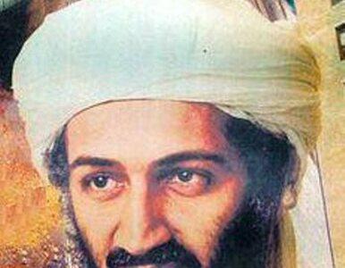 Kucharz bin Ladena przyznał się do wspierania terrorystów