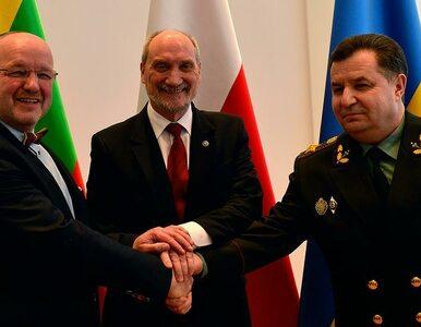 Polacy ramię w ramię z Litwinami i Ukraińcami. Spotkanie ministrów ws....