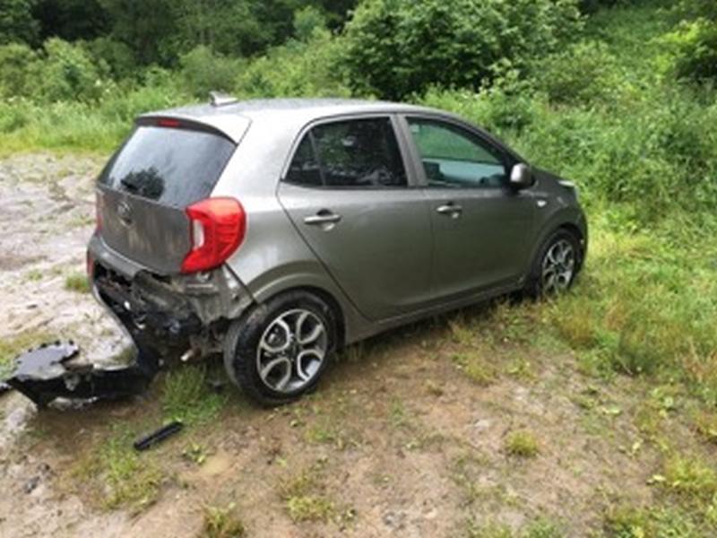 Samochód zniszczony przez niedźwiedzia
