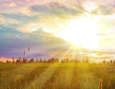 Sobota będzie słoneczna. Lokalnie mogą pojawić się burze