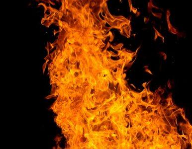 Przyczyną pożaru zakładu w Łodzi prawdopodobnie zaprószenie ognia