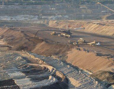 Ruch Palikota: nie chcemy kopalni odkrywkowych