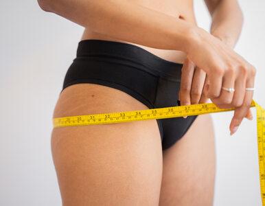 Kwas linolowy a utrata wagi. Co powinieneś o tym wiedzieć?