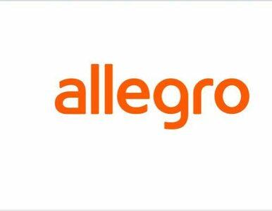 """Nie będzie sprzedaży Allegro. """"Przynosi zyski"""""""