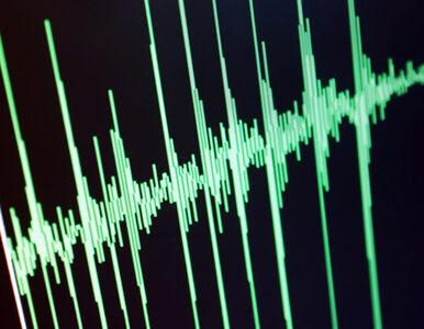 Wstrząs o sile 2 stopni Richtera był przyczyną wybuchu gazu w kamienicy?