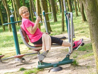 Jak ćwiczyć na siłowni plenerowej?