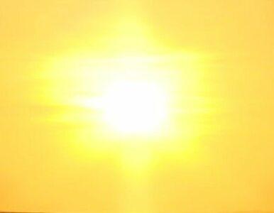 Polacy stworzyli samolot napędzany słońcem