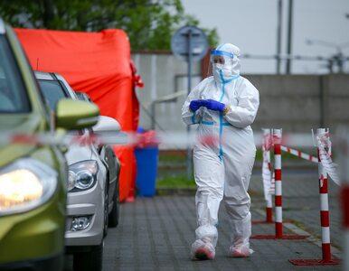 NA ŻYWO: Koronawirus w Polsce i na świecie. Najnowsze informacje z 24 maja