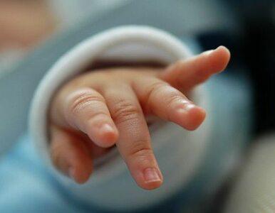 Węgry: dziecko urodziło się trzy miesiące po... śmierci matki