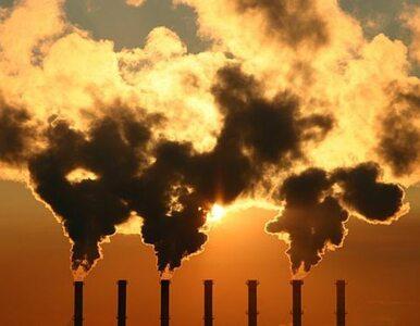 Jakość powietrza  w polskich miastach się poprawia