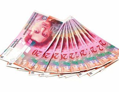 Projekt PO: kredyty spłacać w walutach