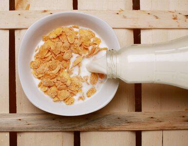 Szkodliwe chemikalia w płatkach śniadaniowych. Znaleziono je m.in. w...