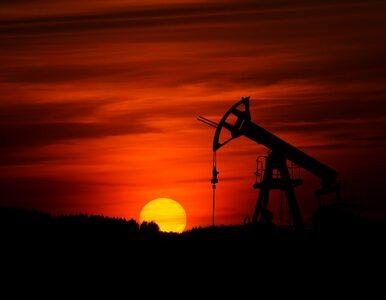 Ropa drożeje na skutek niepokoju w Zatoce Perskiej. Ceny paliwa mogą...