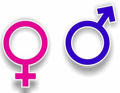 Spór o gender. Prorektor kazał dodać znak zapytania?