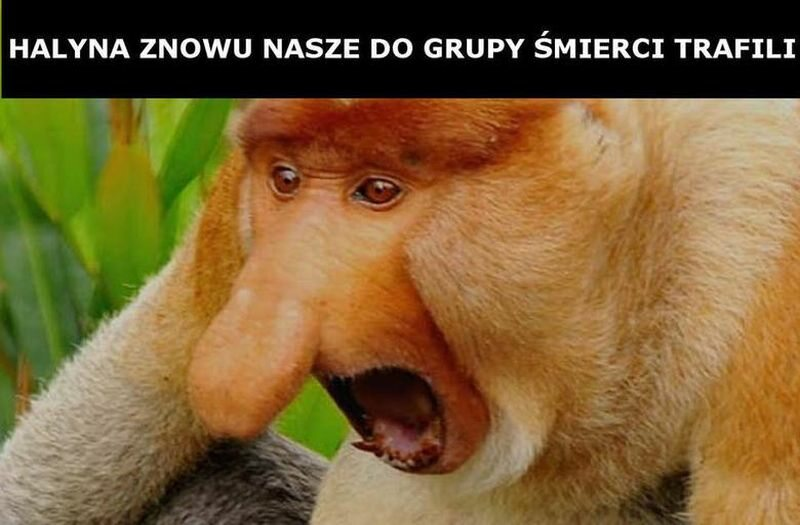 Mem po losowaniu grup eliminacyjnych Euro 2020