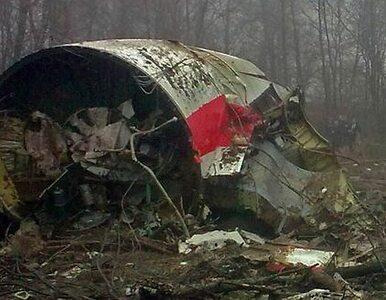 Roth: Tu-154M mógł zostać zniszczony w wyniku zamachu