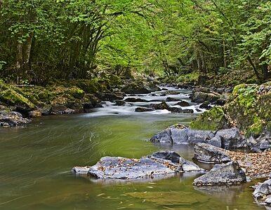 Podlaskie: w jeziorze znaleziono ciała trzech wędkarzy