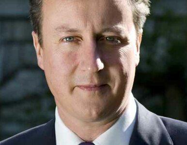 Cameron odpuści unię fiskalną?