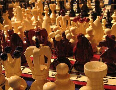 Mucha chce pomóc uczniom. Każe im grać w szachy