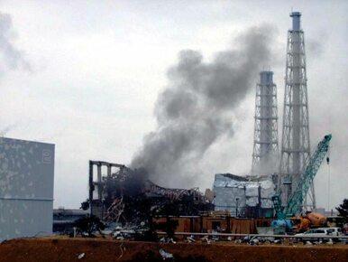 Katastrofa w Fukushimie. Rząd potwierdza pierwszy przypadek śmierci po...