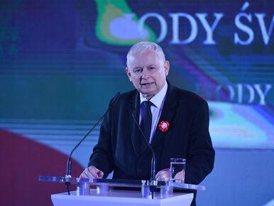 """Zdecydowany głos Kaczyńskiego ws. reparacji. """"Musimy domagać się naszych..."""