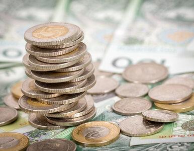 Mniej zapytań o dłużników. To dobry znak dla gospodarki