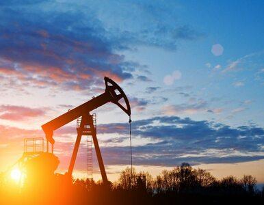 Spadek cen ropy. Ponad 50 tysięcy pracowników zwolnionych