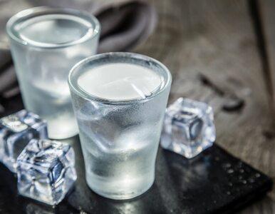 Białorusini produkowali wódkę Absolut. Sąd posłuchał Szwedów i zakazał