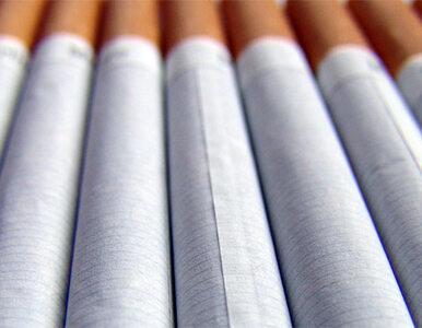 Bierne palenie jeszcze groźniejsze niż sądzono?