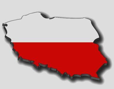 "Marka ""Polska"" warta 602 mld dolarów"