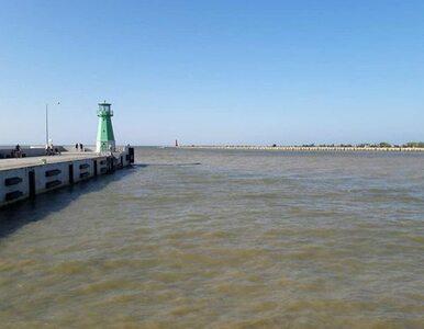 Sinice w Bałtyku - zdjęcia. Jak wygląda woda?