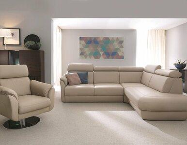Jak wybrać sofę idealną?