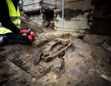 """Na """"Łączce"""" odnaleziono kolejne ofiary komunistów. Część szkieletów..."""