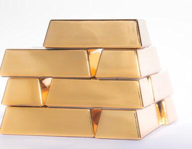 20 kilogramów złota za lidera rebeliantów. Żywego lub martwego