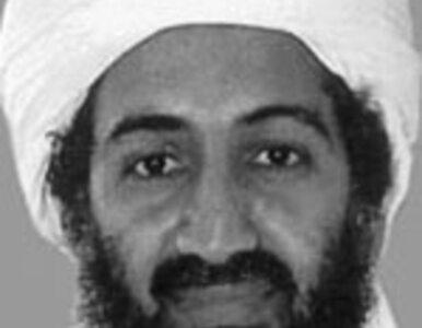 Nie żyje syn Osamy bin Ladena