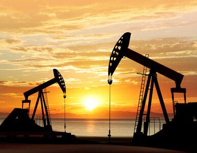 Wydobycie ropy w Polsce się opłaca