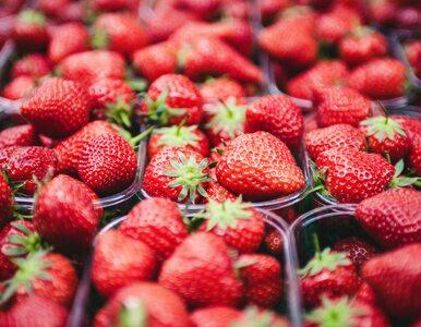 Ile kalorii mają truskawki? Czy można jeść je na diecie?